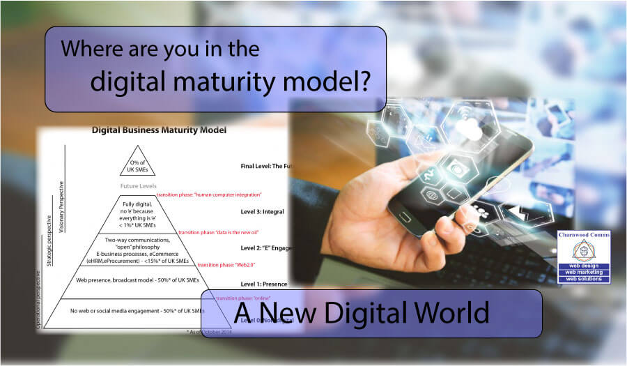 Where Are You In The Digital Business Maturity Model?
